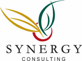 Logo for Synergy Consulting